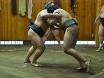 Lottatori di sumo che si preparano nelle stalle di sumo immagine stock