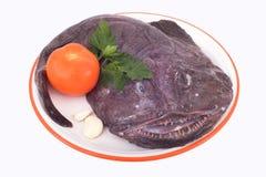 Lotte de mer, poisson horrible image libre de droits