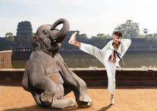Lotte di Karateka con l'elefante Fotografie Stock Libere da Diritti