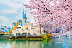 Lotte World amusement park and cherry blossom of Spring, a major tourist attraction in Seoul, South Korea. Royalty Free Stock Photos