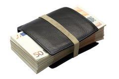 Lotti degli euro in un raccoglitore Immagine Stock