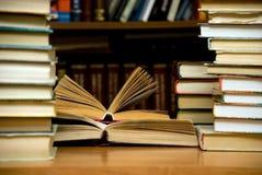 Lotti dei libri nella libreria. Fotografie Stock Libere da Diritti