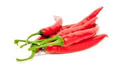 Lotti dei peperoncini rossi piccanti Fotografia Stock