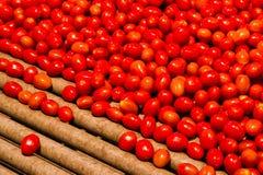 Lotti dei pomodori di ciliegia Immagine Stock