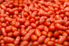 Lotti dei pomodori rossi Fotografia Stock