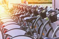 Lotti delle biciclette per affitto fotografia stock libera da diritti