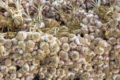 Lotti delle lampadine bianche dell'aglio su esposizione da vendere ad un mercato all'aperto degli agricoltori Immagine Stock