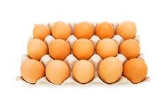 Lotti delle uova nella scatola isolata Immagine Stock
