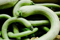 Lotti dello zucchino Immagine Stock Libera da Diritti