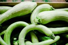 Lotti dello zucchino Fotografia Stock