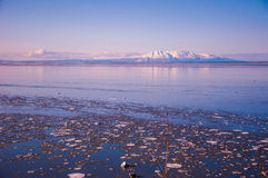 Lotti grandangolari di signora di sonno dei vulcani dell'Alaska di ghiaccio Immagine Stock