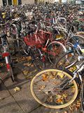 lotto della bicicletta Fotografia Stock