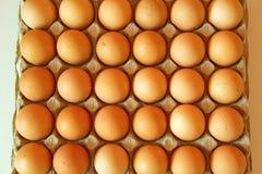 Lotto delle uova in una fila, vista di piano Fotografia Stock