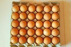 Lotto delle uova in una fila, vista di piano Fotografie Stock