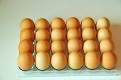 Lotto delle uova in una fila, vista di prospettiva Fotografia Stock Libera da Diritti
