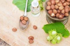 Lotto di cioccolato, degli ingredienti delle nocciole e dell'olio differenti in natura fotografia stock