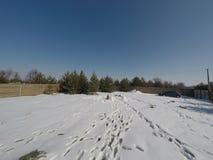 Lotto nell'inverno Costruzione di una casa privata Recinto sulla terra nell'inverno Fotografia Stock Libera da Diritti