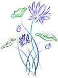 Lotus με τα φύλλα Στοκ Φωτογραφίες