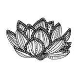 Lotus Цветок нарисованный рукой волшебный - анти- стресс Стоковая Фотография RF