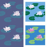 Lotus. Vector seamless background with lotus Royalty Free Illustration