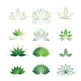 Σύνολο εικονιδίων λουλουδιών Lotus Στοκ Φωτογραφίες