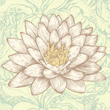 Lotus and abstract floral background Vector Illustration
