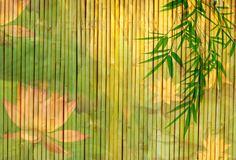 Free Lotus And Bamboo Stock Image - 16865561