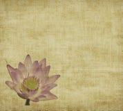 Lotus avec l'ensemble d'abstrait peint Image stock