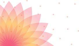 Lotus background Royalty Free Illustration