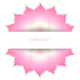 Lotus background decorate. Illustrattion of a lotus on isolate background for decorate text Royalty Free Illustration
