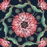Lotus Background Estampado de flores circular con los lirios de agua en un fondo azul profundo Foto de archivo libre de regalías