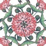 Lotus Background Estampado de flores con los lirios de agua en el fondo blanco Imagenes de archivo