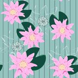 Lotus background. Floral pattern with pink water lilies. Seamless nenuphar cute. stock illustration