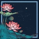 Lotus Background Marco cuadrado decorativo floral Los lirios de agua palmera y las hojas del plátano arrenged en marco angular Imagen de archivo libre de regalías