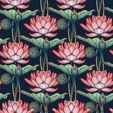 Lotus Background Modèle sans couture floral avec des nénuphars sur le fond bleu profond Images stock