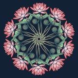 Lotus Background Ornamento decorativo floral del vector Los lirios de agua arrenged en la guirnalda circular aislada en fondo azu Fotografía de archivo libre de regalías