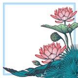 Lotus Background Ornamento decorativo floral del vector Los lirios de agua palmera y las hojas del plátano arrenged en guirnalda  Foto de archivo