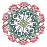 Lotus Background Ornamento decorativo floral do vetor Os lírios de água arrenged na grinalda circular isolada no fundo branco Foto de Stock
