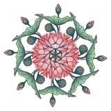 Lotus Background Ornamento decorativo floral do vetor Os lírios de água arrenged na grinalda circular isolada no fundo branco Imagens de Stock