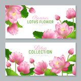 Lotus Banners réaliste Photos stock