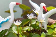 lotus blanc avec la statue de pélicans blancs Photo libre de droits