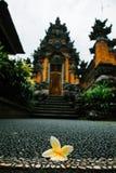 Lotus-bloem met tempel stock fotografie