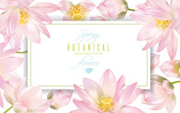 Lotus-bloembanner Stock Afbeelding