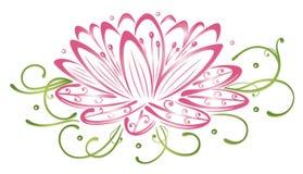 Lotus-bloemen Royalty-vrije Stock Fotografie