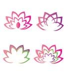 Lotus-bloemen Stock Afbeelding