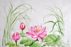 Lotus-bloemwaterverf het schilderen Stock Foto