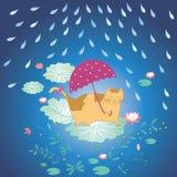 Lotus blomma och katt i regn Arkivbilder
