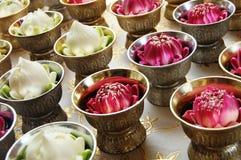 Lotus blomma som är hängiven till buddhaen Arkivfoto