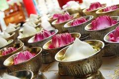 Lotus blomma som är hängiven till buddhaen Royaltyfri Bild