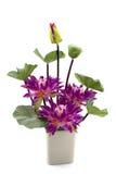 Lotus blommor modellerar i en vas på vit bakgrund arkivbild